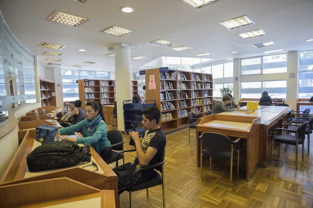 Los usuarios pueden consultar cualquier material bibliográfico que se encuentra disponible en esta área.